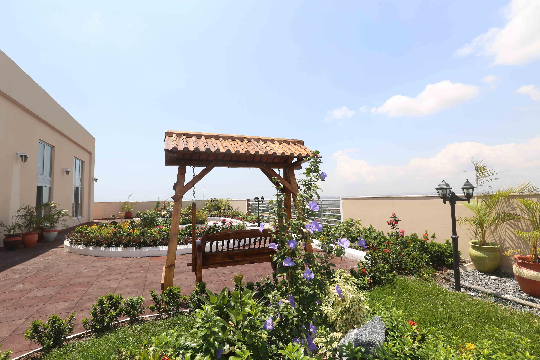 pent garden1